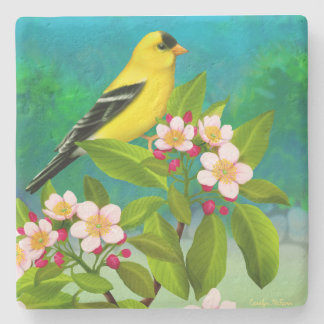 American Goldfinch Bird in Apple Blossoms  Coaster