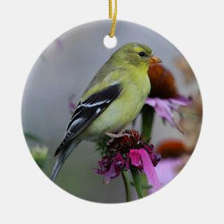 American goldfinch - female round ceramic decoration
