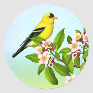 American Goldfinch in Apple Blossoms Sticker