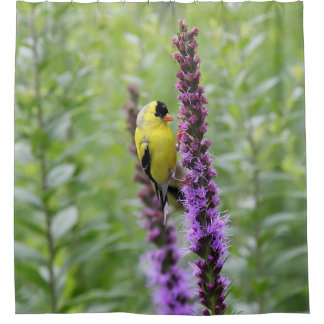 American goldfinch in the garden shower curtain