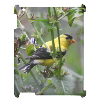 American Goldfinch iPad Cover