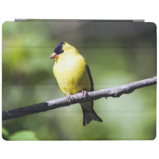 American Goldfinch iPad Smart Cover iPad Cover