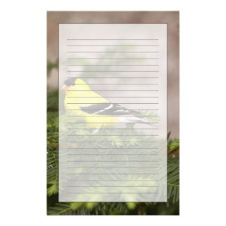 American Goldfinch male in a tree Personalised Stationery