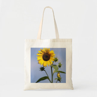 American Goldfinch on Sunflower Budget Tote Bag