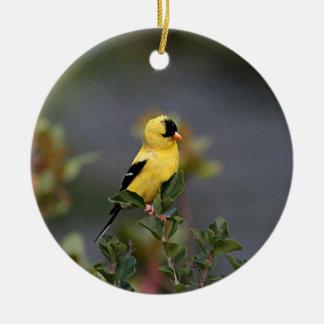 American goldfinch round ceramic decoration