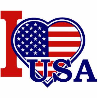 American Heart Flag Pin Photo Sculpture Badge
