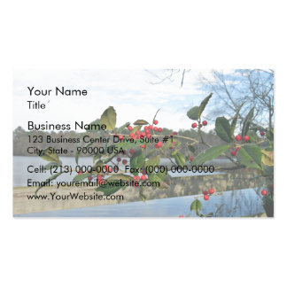 American Holly showing red berries and rigid leaf Business Card Templates