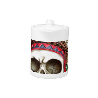 American Indian Skull With Feathers