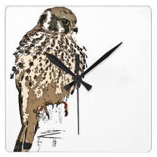 American Kestler Bird Wildlife Animal Wall Clock