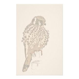 American Kestral Bird Stationery