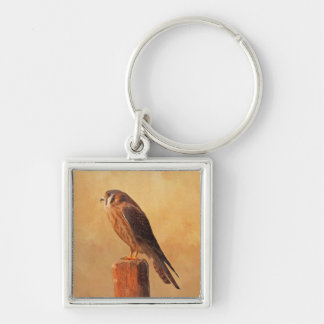 American Kestrel Key Ring