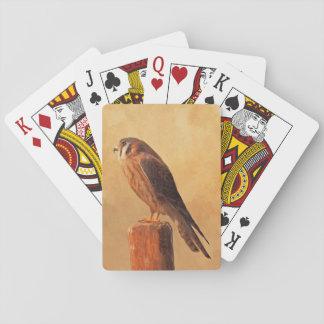 American Kestrel Playing Cards
