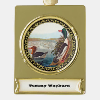 American mallard ducks in a river swimming gold plated banner ornament