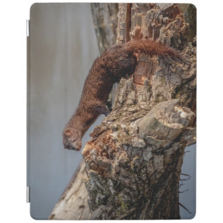 American Mink iPad Cover