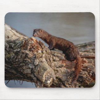 American Mink Mouse Pad