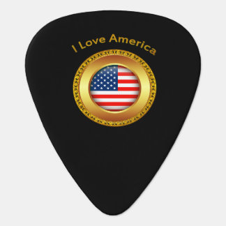 American nation flag with a gold frame plectrum