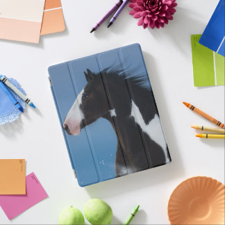 American paint horse iPad cover