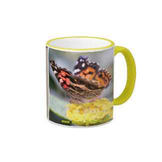 American Painted Lady Butterfly Lifecycle Coffee M Coffee Mug