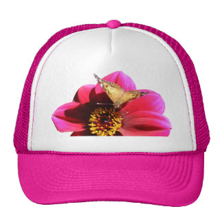 American Painted Lady ~ hat