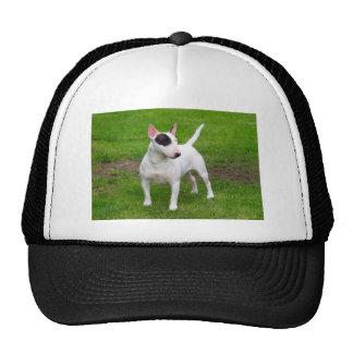 American Pit Bull Terrier Dog Cap