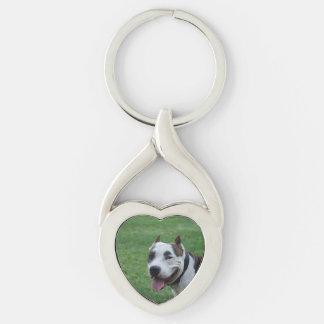 american pit bull terrier smiling key ring