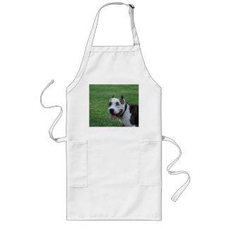 american pit bull terrier smiling long apron