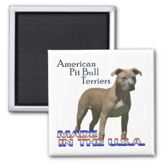 American Pit Bull Terriers : Square Magnet