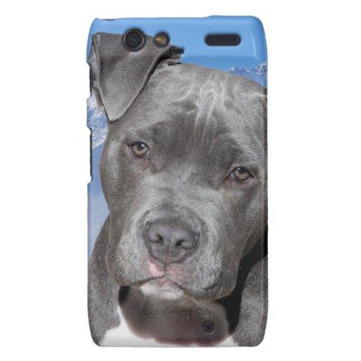 American Pitbull Terrier Puppy Dog Motorola Droid RAZR Covers
