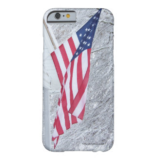 American proud flag Cell Phone and Ipad case