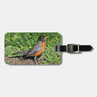 American Robin in the Grass Luggage Tag