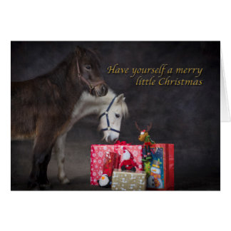 American Shetlands opening their Christmas present Card