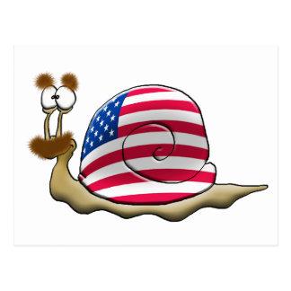 American snail postcard