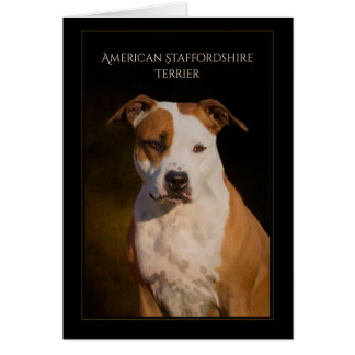 American Staffordshire Terrier Blank Greeting Card