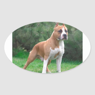 American Staffordshire Terrier Dog Oval Sticker