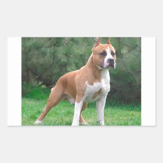 American Staffordshire Terrier Dog Rectangular Sticker