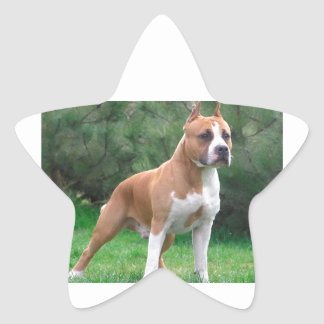 American Staffordshire Terrier Dog Star Sticker