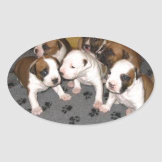 American Staffordshire Terrier Puppies Dog Oval Sticker