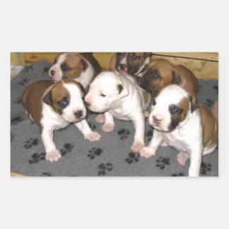 American Staffordshire Terrier Puppies Dog Rectangular Sticker