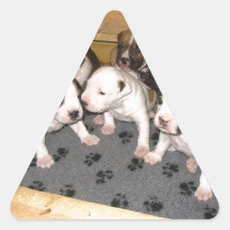 American Staffordshire Terrier Puppies Dog Triangle Sticker
