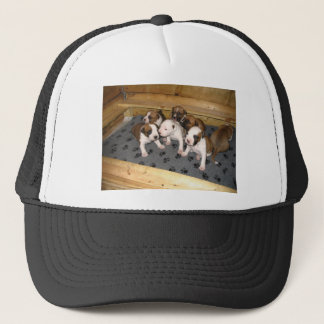 American Staffordshire Terrier Puppies Dog Trucker Hat