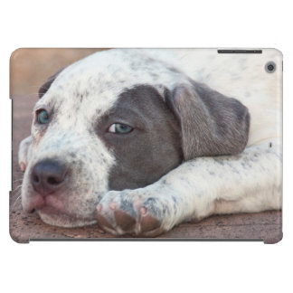 American Staffordshire Terrier puppy lying down Case For iPad Air