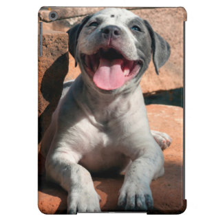 American Staffordshire Terrier puppy Portrait 4 Cover For iPad Air