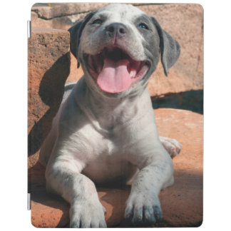 American Staffordshire Terrier puppy Portrait 4 iPad Cover