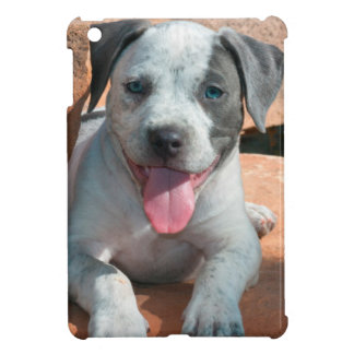 American Staffordshire Terrier puppy Portrait Cover For The iPad Mini