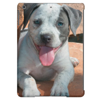 American Staffordshire Terrier puppy Portrait iPad Air Cover