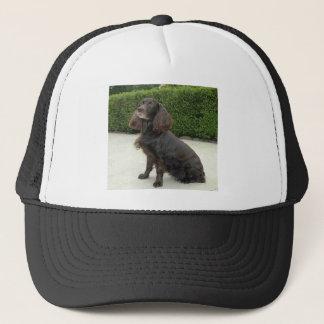 American Water Spaniel Dog Trucker Hat