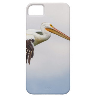 American White Pelican Cruising iPhone 5 Covers