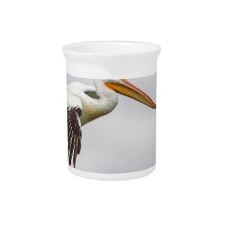 American White Pelican Cruising Pitcher
