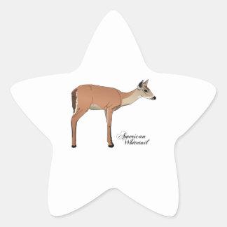 AMERICAN WHITETAIL STAR STICKER