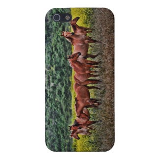 American Wild Mustangs Case For The iPhone 5